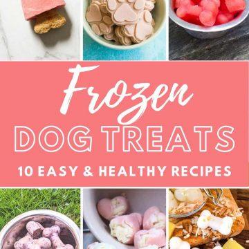 frozen dog treat collage