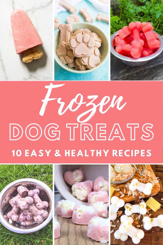 frozen dog treat recipe collage