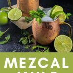 Pinterest graphic for mezcal mule