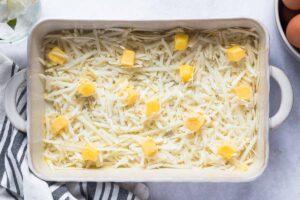 swiss cheese in casserole dish