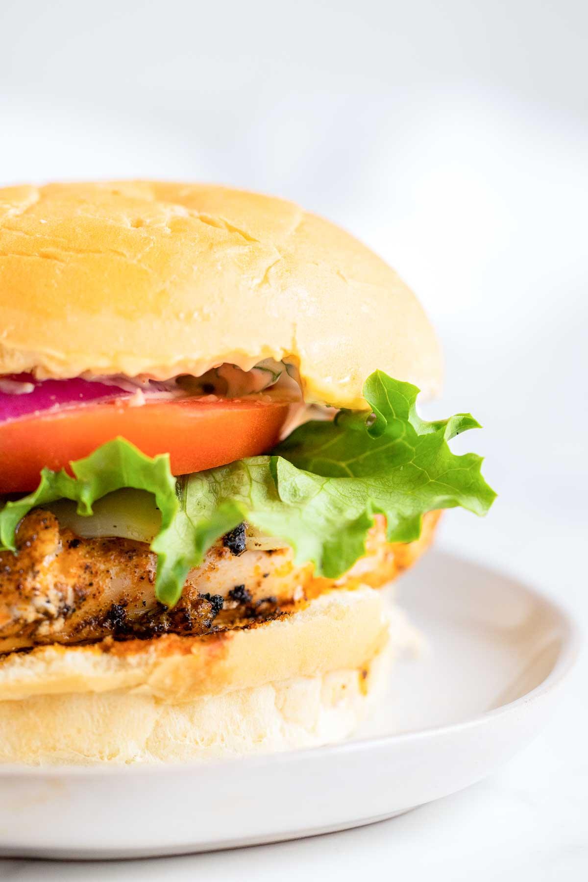close up of chicken sandwich